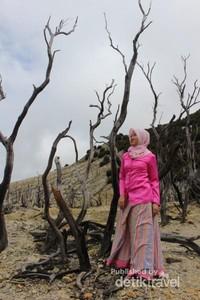 Salah satu pengunjung tengah befoto di keindahan hutan mati.