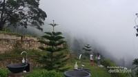 Pemandangan bukit saat kabut di Pondok Kopi