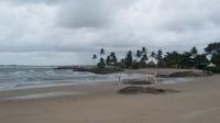 Pasir pantai yang putih dan pepohonan di pantai menjadi daya tariknya