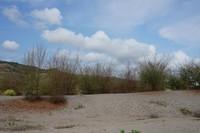 Di beberapa spot ditumbuhi juga tanaman hijau yang menjadikan gumuk tidak terlalu gersang