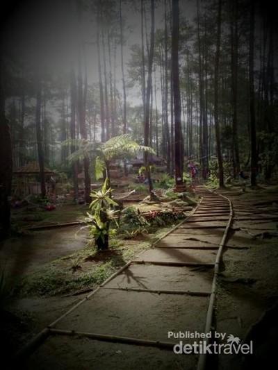 Wisata Murah yang Instagramable dari Lembang