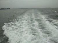 Hamparan Lautan Lepas disepanjang perjalanan ke Pulau Karimunjawa