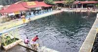 Kolam tempat berenang dengan Ikan Dewa