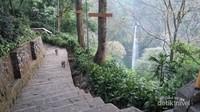 Sekumpulan monyet ekor panjang yang dapat kita jumpai di anak tangga menuju lembah Curug Cimahi