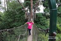 Berfoto di tengah canopy bridge , jika takut ketinggian jangan melihat ke bawah saat berada di sini.