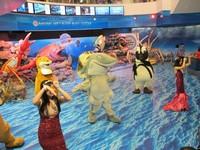Traveler akan disambut oleh tarian para maskot sebelum memasuki area Siam ocean World