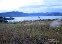 Bukit Beta di Samosir