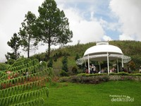 Ada banyak objek wisata menarik di Tanah Karo dan salah satunya adalah Taman Bunga Sapo Juma.
