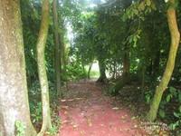 Secara administrasi, pulau ini termasuk dalam wilayah Desa Bogak, Kecamatan Tanjung Tiram, Kabupaten Batubara, Sumatera Utara.
