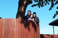 Main di rumah pohon