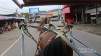 Cukup dengan Rp. 30.000 traveler bisa berkeliling kawasan Lembang sampai puas.