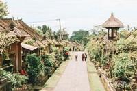 Luas Desa Adat Penglipuran sekitar 112 Ha. Terdiri dari 37 Ha hutan bambu, 49 Ha ladang pertanian, dan 12 Ha perumahan penduduk.