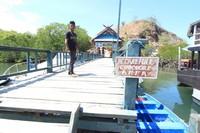 Tak hanya Komodo, Pesisir Pulau Rinca juga merupakan habitat dari buaya air asin yang biasa disebut aligator.