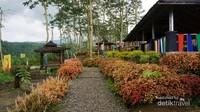 Tanaman hias coleus mempercantik Taman Agro Margomulyo