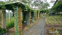Area taman dengan bunga yang baru ditanami nampak terawat