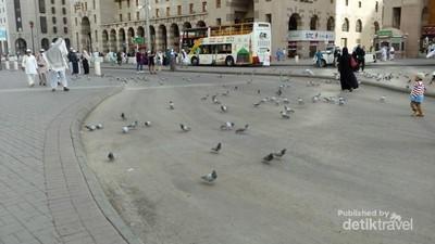 Potret Kota Madinah, Makkah, dan Gurun Hudaibiyyah