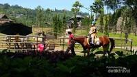Serunya naik kuda pakai kostum