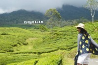 The Sound Of Pagaralam