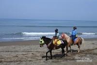 Menyusuri Pantai bisa dengan berkuda, Tarif sewanya hanya 30 ribu