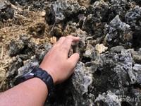 Pakai sarung tangan bila perlu.Bagi yang takut telapak tangannya lecet atau terluka, sarung tangan bisa jadi solusi.