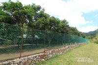Penangkaran ini dibangun untuk mempercepat perkembangbiakan Rusa Bawean
