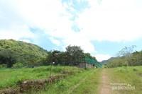 Penangkaran yang berada di antara perbukitan hijau di Pulau Bawean
