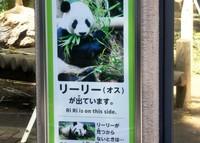 Poster Riri terpampang di depan kandang