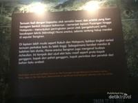 Informasi mengenai temuan fosil