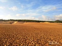 Hamparan pasir berwarna kemerahan yang akan semakin cantik jika terkena cahaya matahari yang hampir tenggelam