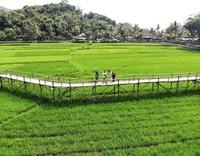 Bisa menjadi tujuan alternatif jika berkunjung ke daerah Dlingo, Mangunan, Bantul