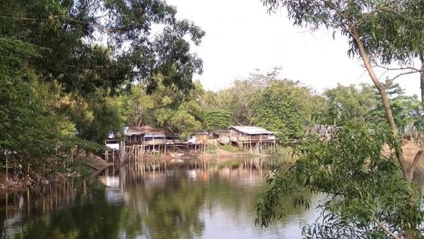 Suasana adem dan nyaman ketika berada di Situ Cibereum