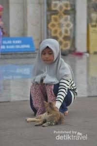 Seorang anak yang sedang bermain dengan kucing sambil menunggu orangtuanya yang sedang mengikuti kajian