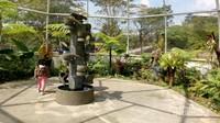 Lokasi Taman Paku yang  ada di kebun raya.