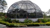 Taman paku yang berbentuk seperti kubah menjadi lokasi favorit pengunjung yang datang ke kebun raya ini .