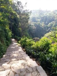 Deretan anak tangga untuk mencapai air terjun