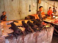 Salah satu spot di pasar ekstrim Tomohon