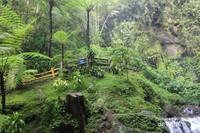 Suasana sekeliling yang hijau membuat pengunjung betah di tempat ini.
