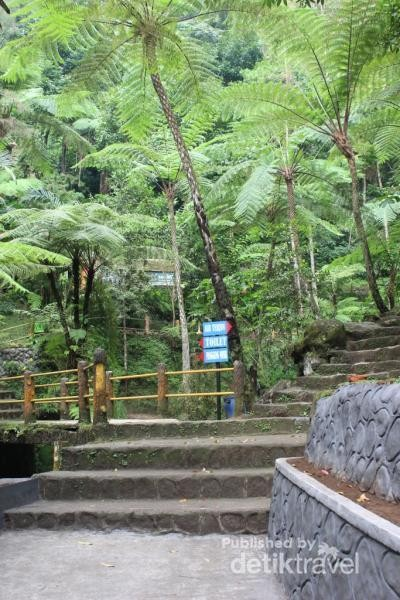 Perjalanan ke air terjun hanya melewati tangga yang tidak terlalu tinggi seperti ini.