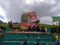 salah satu produksi Kaligua yang berbentuk Kotak Kemasan Teh yang menjadi Icon wisata Kaligua