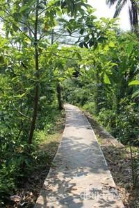 Jalan seperti ini yang akan membawa kita menuju Curug Awang.