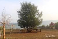 Bangku kayu dibawah pohon juga dapat digunakan pengunjung untuk beristirahat atau menunggu antrian berfoto.