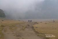 Kabut menghampiri di Surya Kencana
