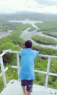 Mangrove yang dinilai mirip di Raja Ampat di Kabupaten Donggala