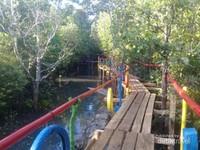 Jalan di kawasan mangrove Donggala