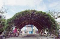 Area Berteduh di dalam taman