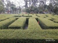 Labirin di Taman Labirin Malang