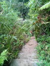 Anak tangga yang berjumlah 77 buah merupakan akses satu-satunya menuju Air Terjun Sungai Berangin.