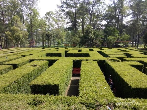 Ini Lho Taman Sesat Di Coban Rondo Malang