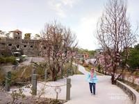 Taman bernuansa jepang