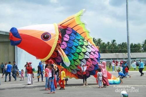 Ikan Raksasa di Natuna